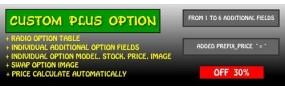 Custom Plus Option
